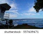 black sand beach  rocks  life... | Shutterstock . vector #557639671