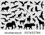 Stock vector set of animals silhouettes isolated vector illustration 557652784