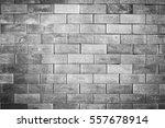 brick wall background | Shutterstock . vector #557678914