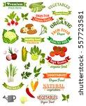 vegan food shop vector icons... | Shutterstock .eps vector #557723581