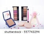 cosmetics image | Shutterstock . vector #557743294