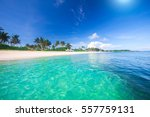 beach and tropical sea | Shutterstock . vector #557759131