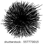 chaotic hand drawn scribble... | Shutterstock .eps vector #557773015