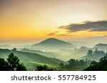 cameron highlands sunrise  at... | Shutterstock . vector #557784925