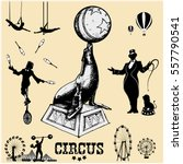 circus and amusement park... | Shutterstock .eps vector #557790541