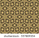 golden floral geometric lace... | Shutterstock .eps vector #557809354