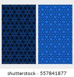 set of decorative floral lace... | Shutterstock .eps vector #557841877