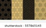 set of modern floral seamless...   Shutterstock .eps vector #557865145