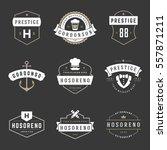 vintage logos design templates... | Shutterstock .eps vector #557871211