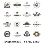 vintage logos design templates... | Shutterstock .eps vector #557871259