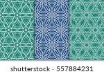 set of modern floral seamless... | Shutterstock .eps vector #557884231
