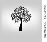 vector tree illustration | Shutterstock .eps vector #557884501