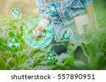farmer inspecting corn in... | Shutterstock . vector #557890951