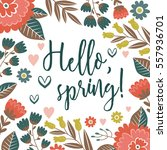 hello  spring  greeting card.... | Shutterstock .eps vector #557936701