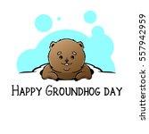 happy groundhog day vector... | Shutterstock .eps vector #557942959