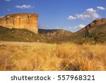 The Brandwag Buttress In The...