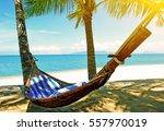 empty hammock between palms...   Shutterstock . vector #557970019