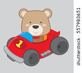 cute teddy bear driving race... | Shutterstock .eps vector #557983651