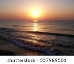 the sea  beach  sun. | Shutterstock . vector #557989501