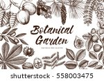 decorative design with  hand... | Shutterstock . vector #558003475