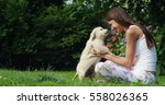 Stock photo a young woman on a sunny day playing with his golden retrivier puppy in the garden giving himself 558026365