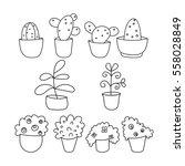 plant  flower  cactus  ficus in ... | Shutterstock .eps vector #558028849