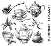 tea collection elements in... | Shutterstock .eps vector #558032257