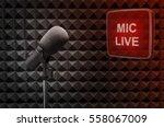 microphone in radio studio | Shutterstock . vector #558067009