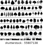 set of silhouettes of trees ... | Shutterstock . vector #55807138