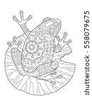 frog coloring book vector... | Shutterstock .eps vector #558079675