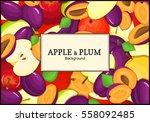 the rectangular frame on ripe...   Shutterstock .eps vector #558092485