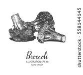 broccoli hand drawn...   Shutterstock .eps vector #558144145