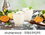 refreshing summer alcoholic... | Shutterstock . vector #558159295