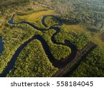aerial view of a rainforest in... | Shutterstock . vector #558184045