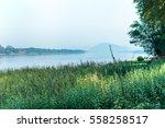 river side green grass  | Shutterstock . vector #558258517