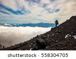 tourist going down the... | Shutterstock . vector #558304705