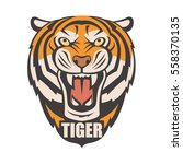 image of angry tiger head.... | Shutterstock .eps vector #558370135