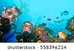 Couple Of Scuba Divers Looking...
