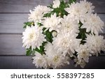 White Chrysanthemum In Flower...