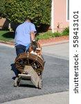an unidentifiable plumber... | Shutterstock . vector #558413101