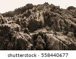 full frame abstract rocky stone ... | Shutterstock . vector #558440677
