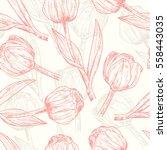 vector spring flowers. flower... | Shutterstock .eps vector #558443035