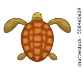 turtle icon. cartoon... | Shutterstock .eps vector #558460639