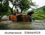cameron highlands  malaysia  ... | Shutterstock . vector #558464929