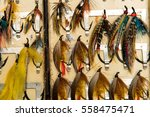 an opened salmon fly box... | Shutterstock . vector #558475471