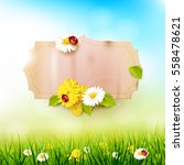 spring background with flowers... | Shutterstock .eps vector #558478621