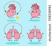 cute cartoon heart and lung... | Shutterstock . vector #558538981