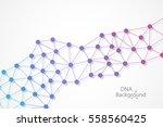 abstract dna background. vector ... | Shutterstock .eps vector #558560425