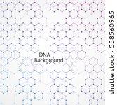 abstract dna background. vector ... | Shutterstock .eps vector #558560965