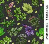 vector greenery seamless... | Shutterstock .eps vector #558566431